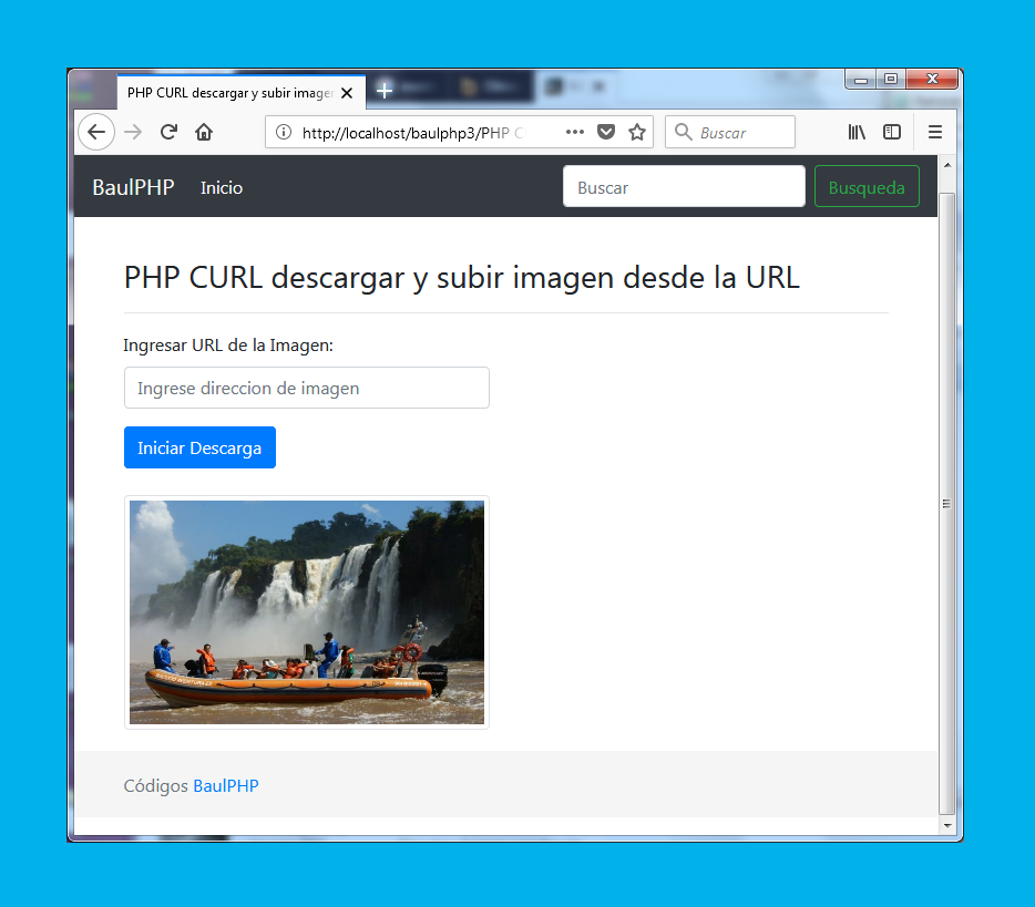 Descargar y subir imagen desde la URL con PHP cURL